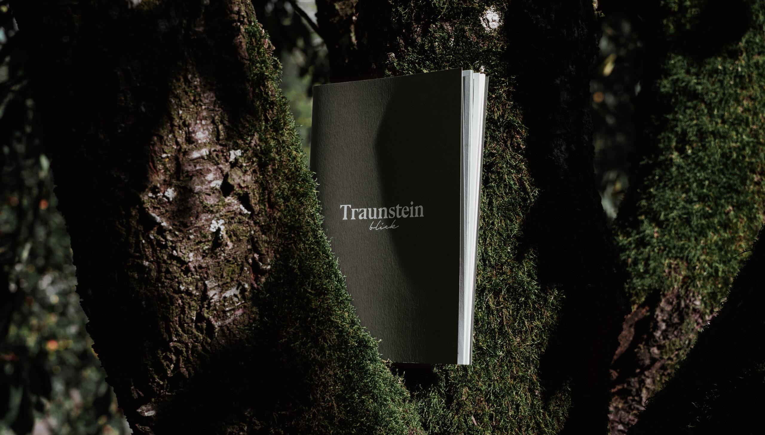 Traunsteinblick - Schmid Baugruppe