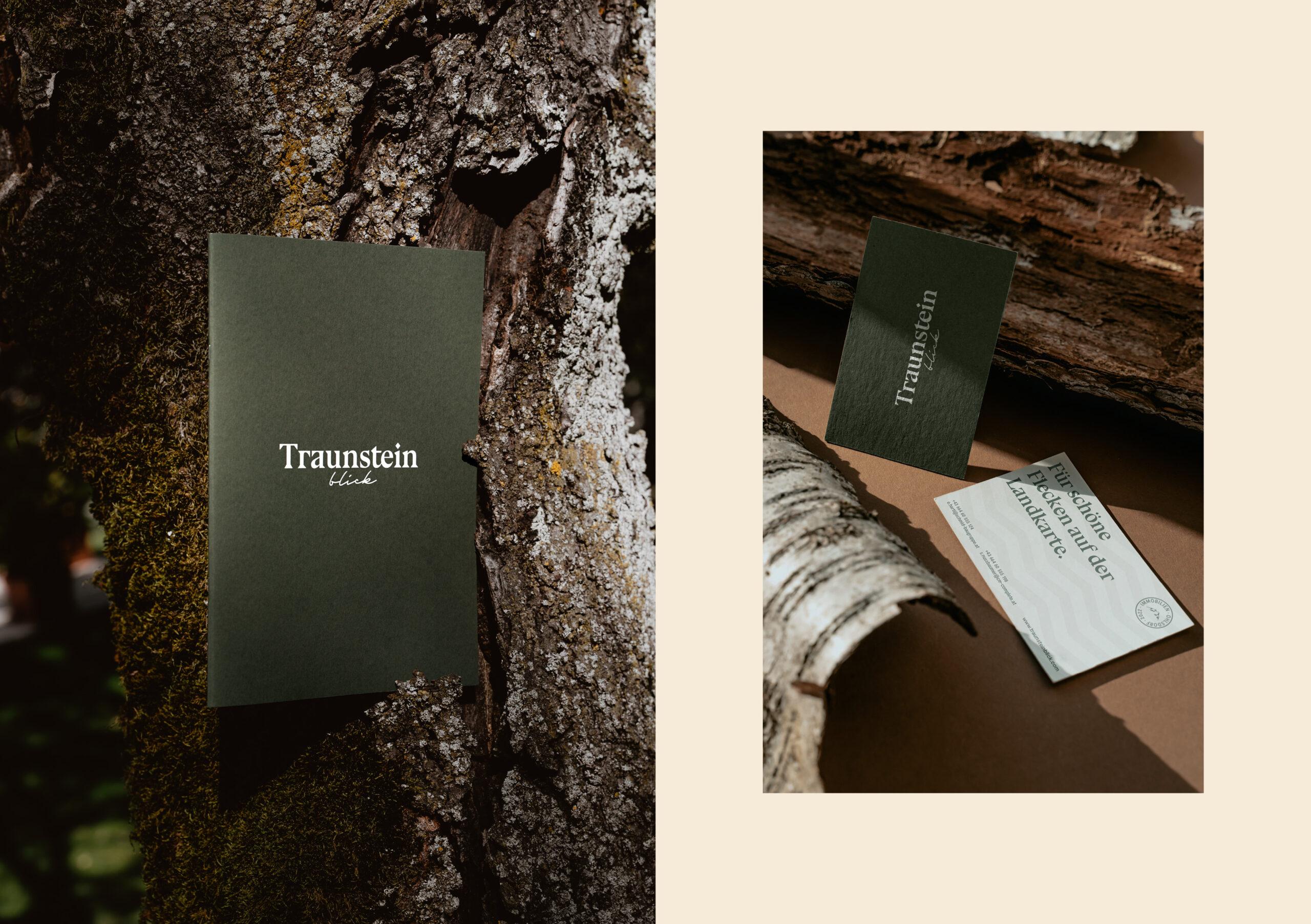 1900x1080_Traunstein_5